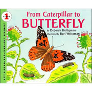 From Caterpillar to Butterfly - Paperback