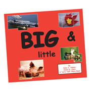 Big & Little Paperback