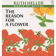 The Reason for a Flower - Paperback