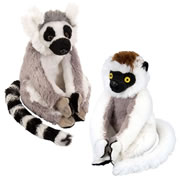"Ring Tail and Sifaka Lemur 8"" Plush Set"