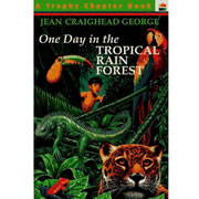 One Day In The Tropical Rain Forest (Paperback)