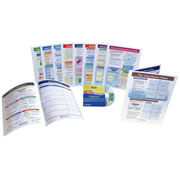 Grade 6 Math Visual Learning Guides Set