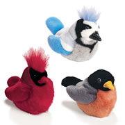 Backyard Birds (Set of 3)