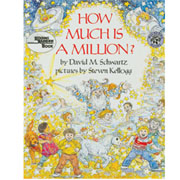 How Much Is A Million? (Paperback)