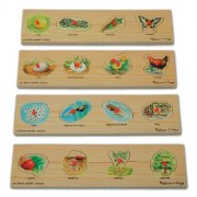 Kaplan Life Cycle Peg Puzzle Set (Set of 4 puzzles)