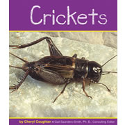 Crickets - Paperback