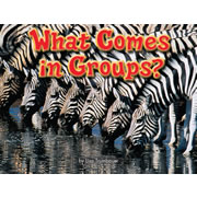 What Comes In Groups - Paperback