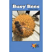 Busy Bees - Paperback