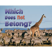 Which One Does Not Belong? - Paperback