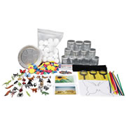 Insects and Spiders Exploration Kit