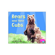 Bears And Their Cubs (Paperback)