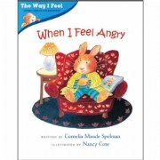 When I Feel Angry (Paperback)