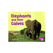 Elephants And Their Calves (Paperback)