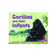 Gorillas And Their Infants (Paperback)