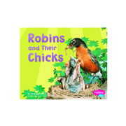 Robins And Their Chicks (Paperback)