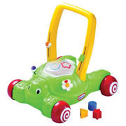 2-in-1 Push 'N Play Turtle