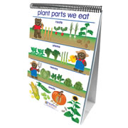 All About Plants Flip Chart