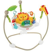 Rainforest Jumperoo™