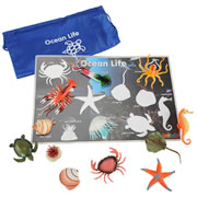 Sea Life Activity Mat