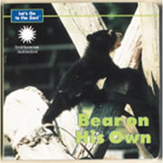 Bear On His Own (Board Book)