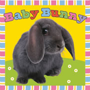 Baby Bunny - Cloth Book