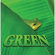 Green - Board Book