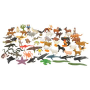 Animals from Across the Land Mini Set