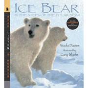 Ice Bear - Paperback & CD