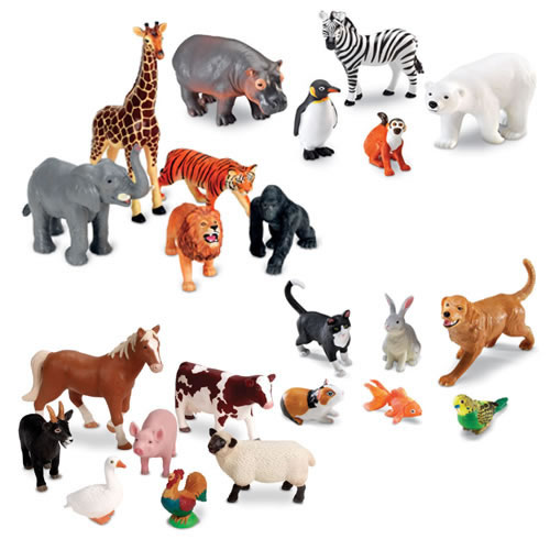 animals resources tips travelling pets international
