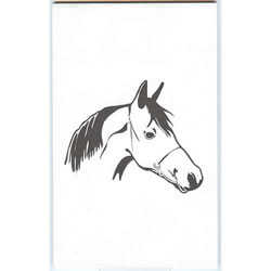 LAP-3™ Horse Illustration Pad