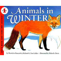Animals in Winter - Paperback