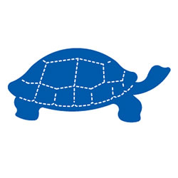 Turtle Die Cut Large