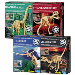 Dig a Dino Excavation Kit (4 Pack)