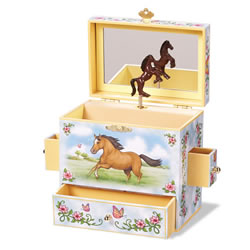 Enchantmints Wild & Free Musical Jewelry Box