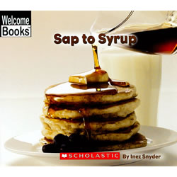 Sap to Syrup - Paperback