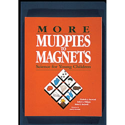 More Mudpies to Magnets