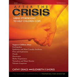 After the Crisis - Paperback