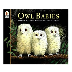 Owl Babies - Big Book
