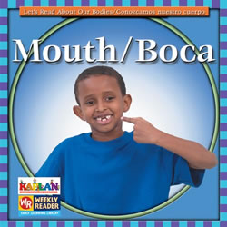 Kaplan Mouth Big Book (level D)