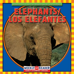 Animals I See At The Zoo Elephants - Bilingual (Paperback)