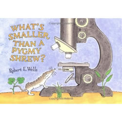 What's Smaller Than A Pygmy Shrew - Paperback