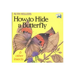 How to Hide a Butterfly - Paperback