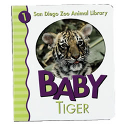 Baby Tiger (Board Book)