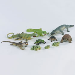 Tropical Water Habitat Set - Set of 10