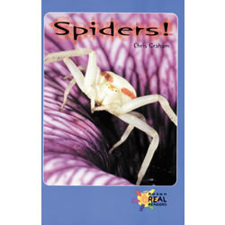 Spiders - Paperback