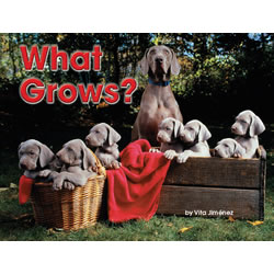 What Grows? - Paperback