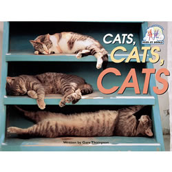 Cats Cats Cats - Paperback