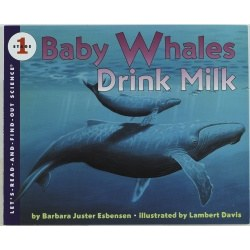 Baby Whales Drink Milk - Paperback