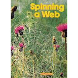 Spinning A Web (Big Book)