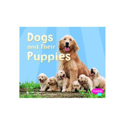 Dogs And Their Puppies (Paperback)